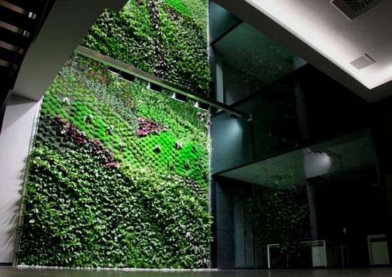 Urbanarbolism Green Wall in Elche