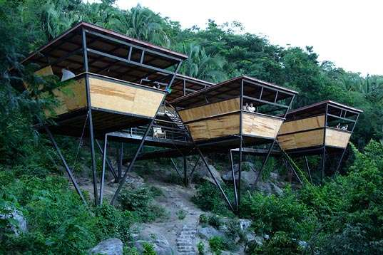 Triangular Jungle Shelters