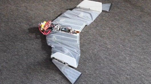 Vampire Bat Drones