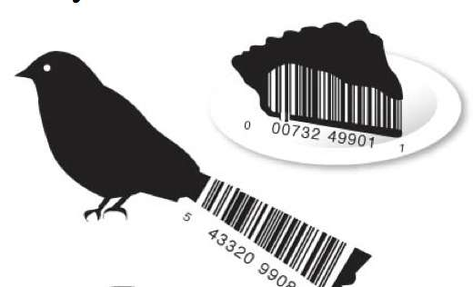 Product-Boasting Barcodes