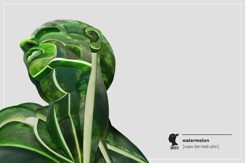 Anatomical Produce Illustrations