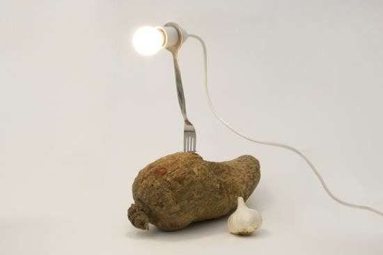 Healthy Table Lamps