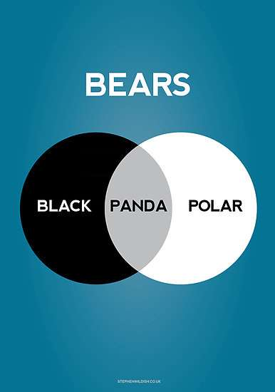 Venn Diagrams by Stephen Wildish