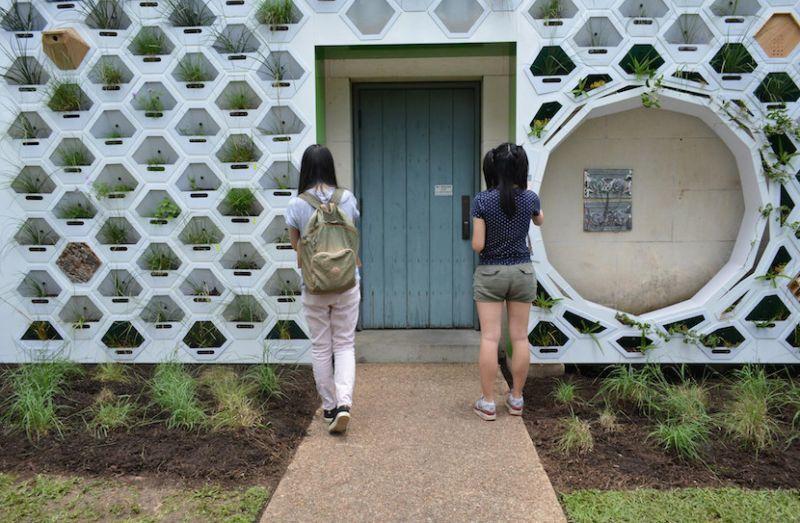 University Campus Living Walls
