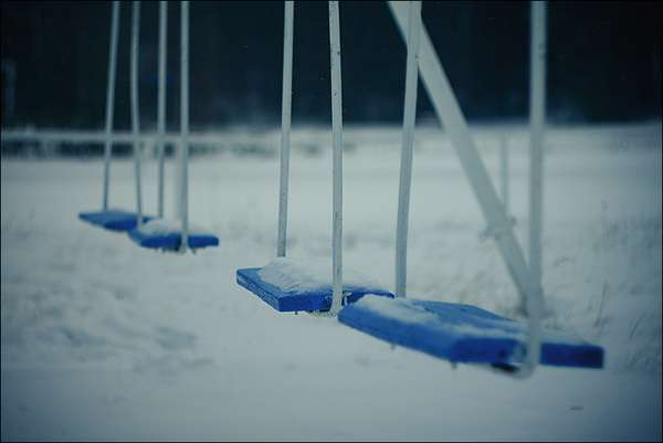 Snowy Swing Shoots