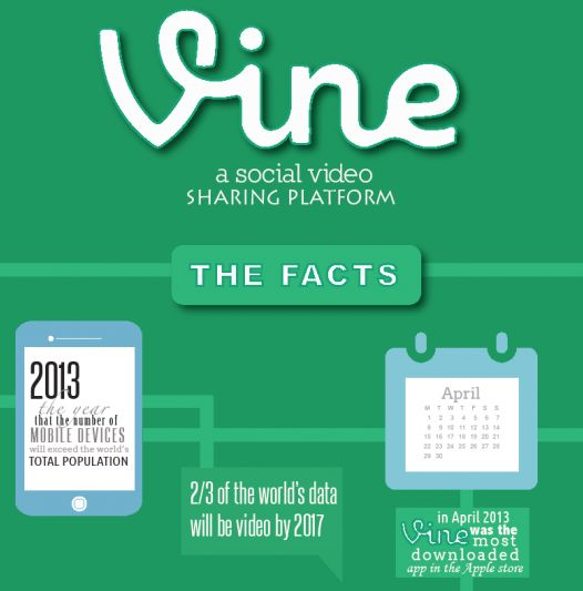 Vine video guide