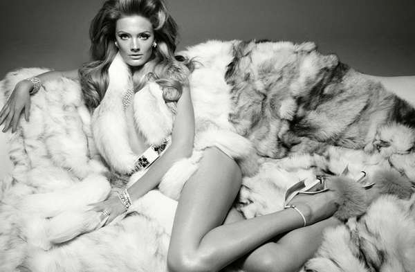 Fierce Feline Editorials