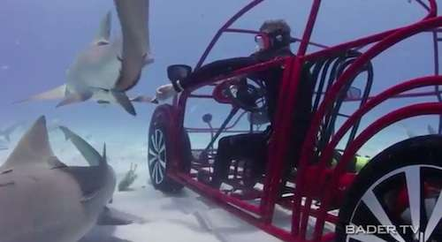 Underwater Shark Viewing Cars