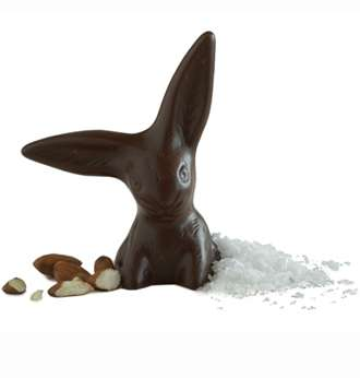 Adorable Chocolate Bunnies