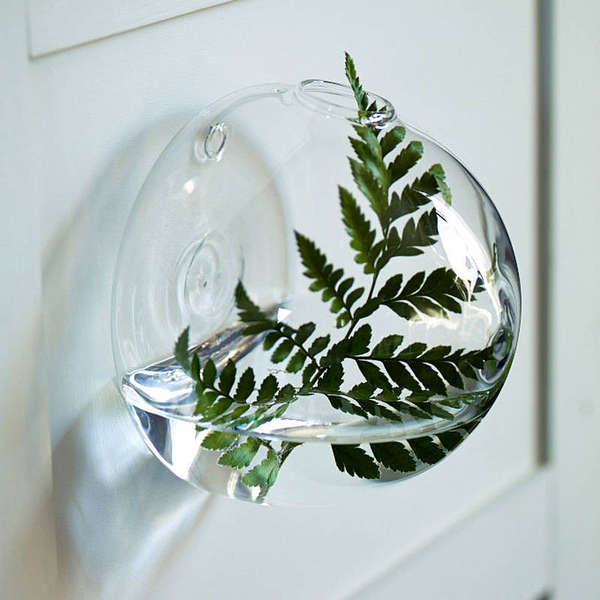 Mounted Aquatic Vases Wall Vase