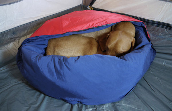 warm dog bed