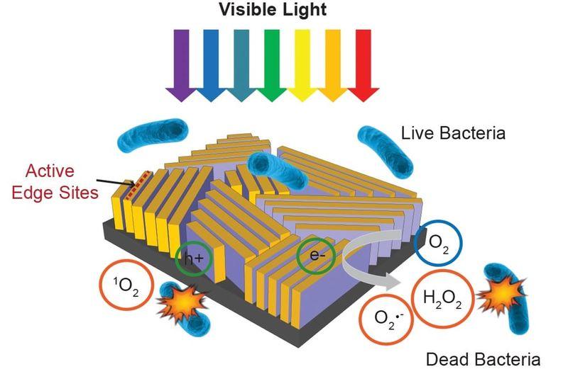 Compact Water Microreactors