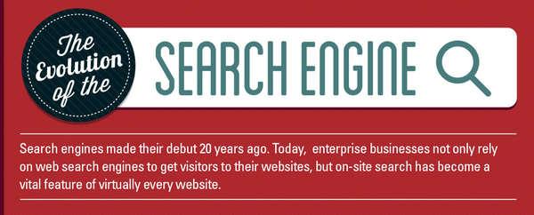 Evolutionary Search Engine Infographics