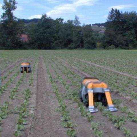 Eco-Friendly Weed Eaters