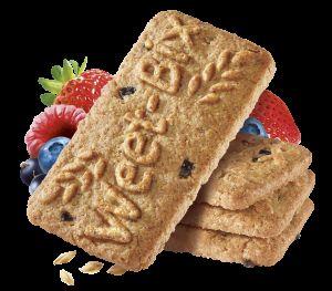Fibrous Breakfast Biscuits