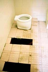 Westernization of Toilets