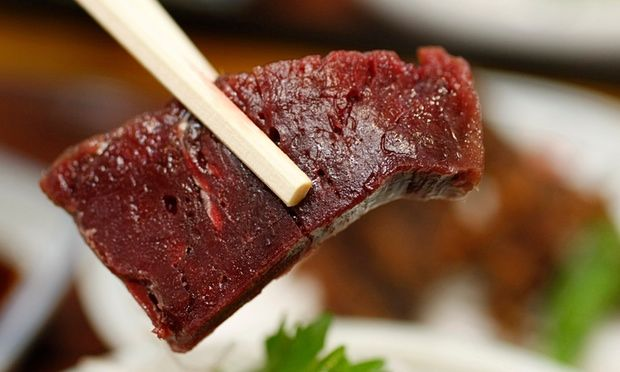 Whale Meat Food Festivals