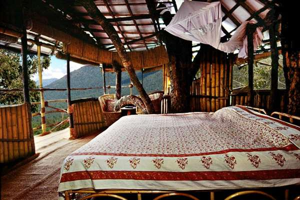 Wild Canopy Reserve Hotel, India