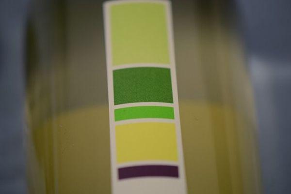 Flavor Focused Wine Labels