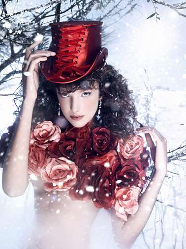 Snow-Covered Crimson Photography