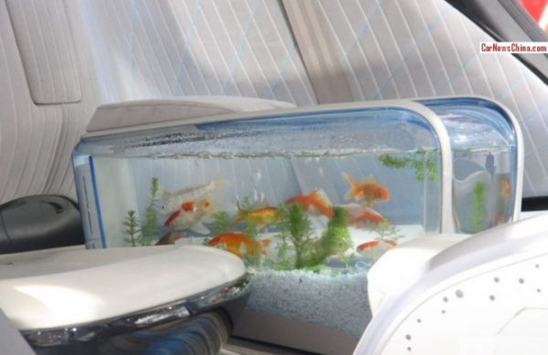 Built-In Aquarium Automobiles