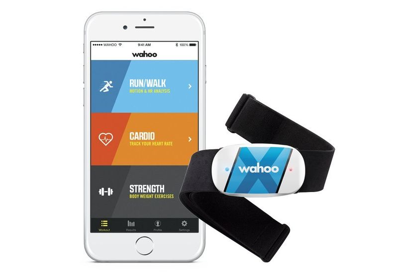 Personalized Health Trackers