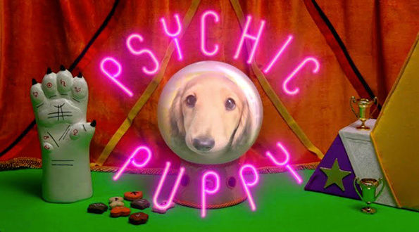 Psychic Soccer Puppies