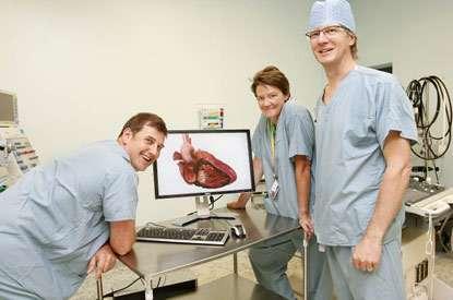 3D Digital Dissections