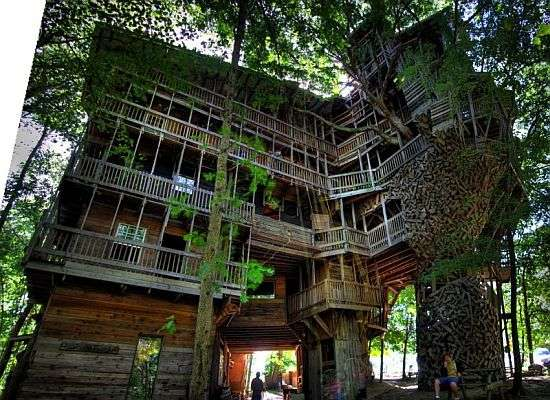Treetop Mansions World S Tallest Tree House