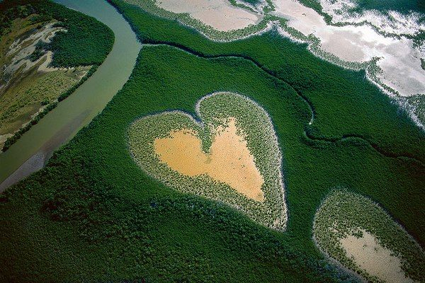 Conservationist Aerial Photography
