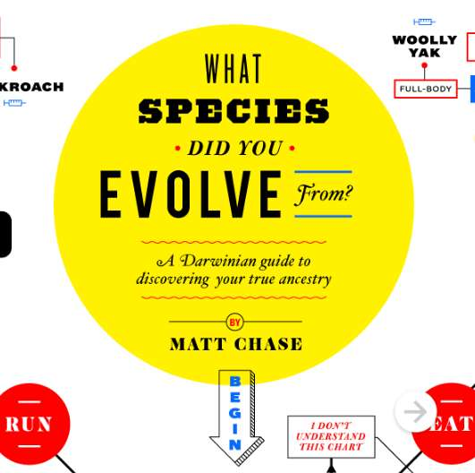 Spoofed Species Origin Infographics