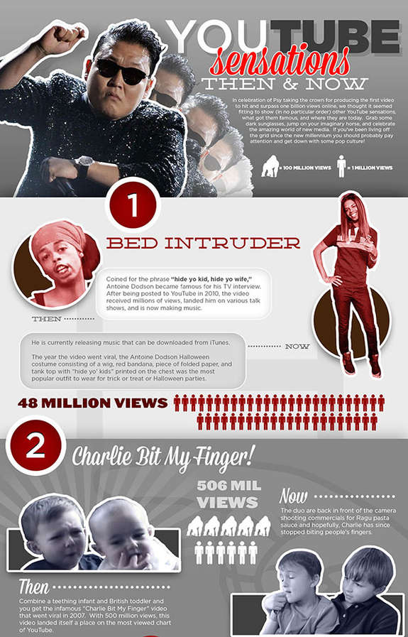 Web Video Celebrity Infographsics
