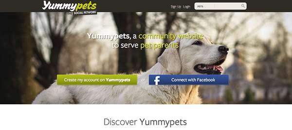 Social Pet-Focused Networks