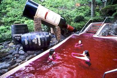 Wine Spa, Coffee Spa, Tea Spa, and Sake Spa