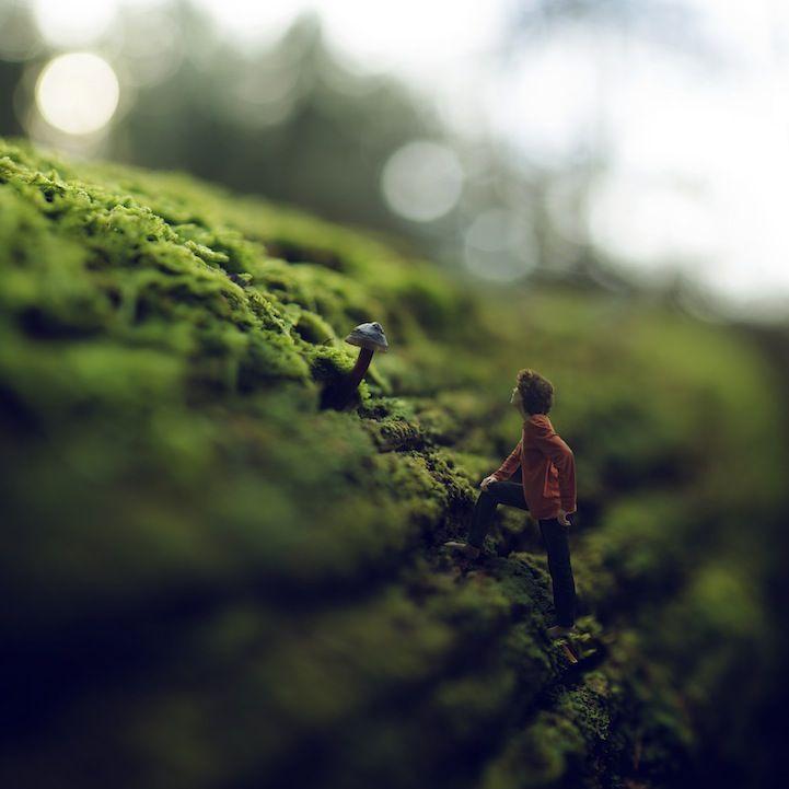 Magical Miniature Photography
