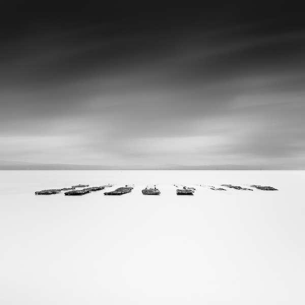 Haunting Horizon Photography