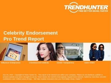 Celebrity Endorsement Trend Report and Celebrity Endorsement Market Research