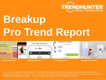 Breakup Trend Report and Breakup Market Research
