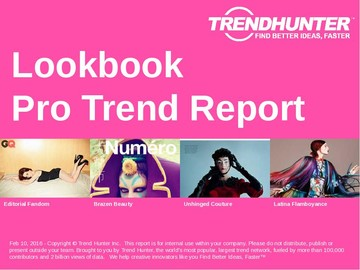 Lookbook Trend Report and Lookbook Market Research