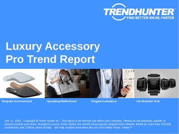 Luxury Accessory Trend Report and Luxury Accessory Market Research