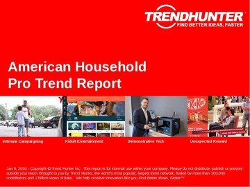 American Household Trend Report and American Household Market Research