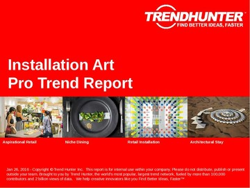 Installation Art Trend Report and Installation Art Market Research