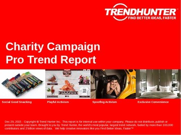 Charity Campaign Trend Report and Charity Campaign Market Research