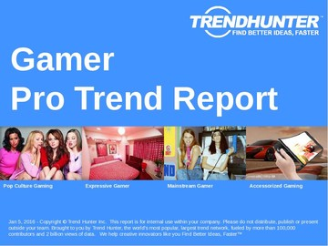 Gamer Trend Report and Gamer Market Research