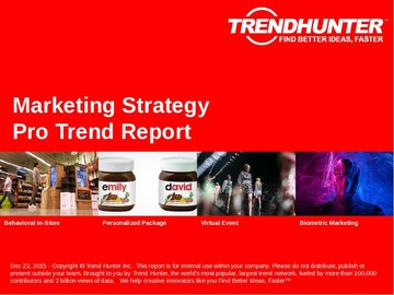 Marketing Strategy Trend Report and Marketing Strategy Market Research