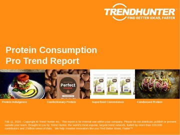 Protein Consumption Trend Report and Protein Consumption Market Research