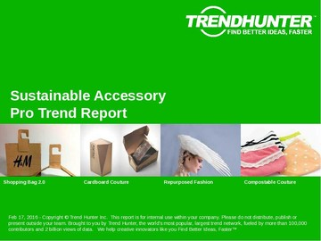 Sustainable Accessory Trend Report and Sustainable Accessory Market Research