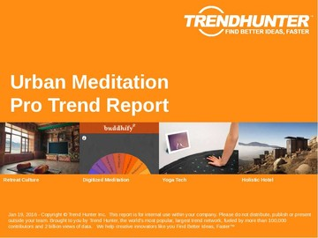 Urban Meditation Trend Report and Urban Meditation Market Research