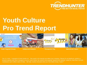 Youth Culture Trend Report and Youth Culture Market Research