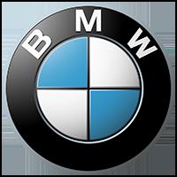 Future Festival Attendee BMW